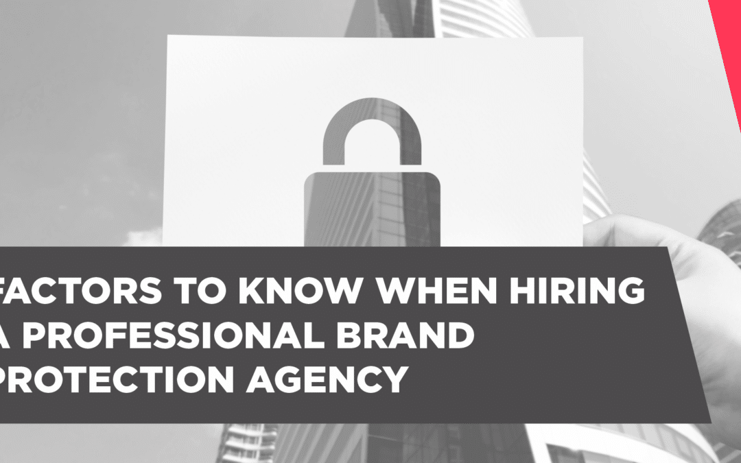 Factors To Know When Hiring a Professional Brand Protection Agency